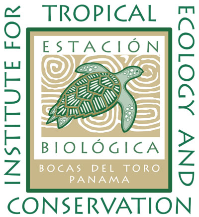 institute for tropical ecology and conservation education