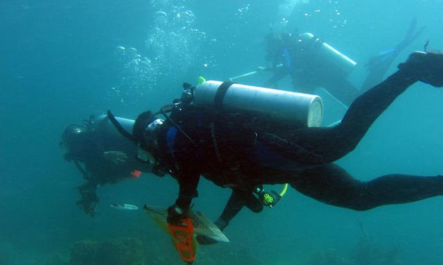 Reef divers.web.pg1