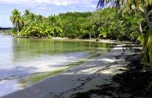 Drago Beach