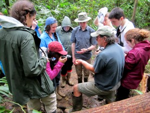 Cambridge School of Weston students in the forest